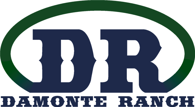 Damonte Ranch High School logo