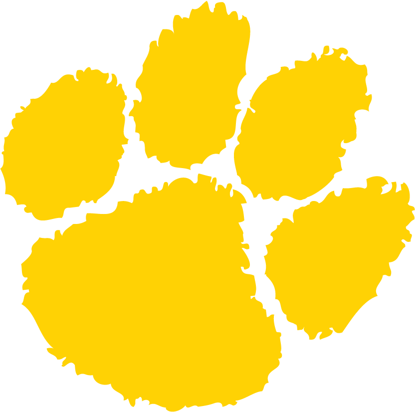Daniel Hand High School logo