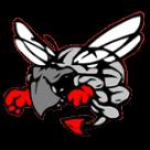Hilldale High School  logo