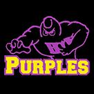 Bowling Green High School logo