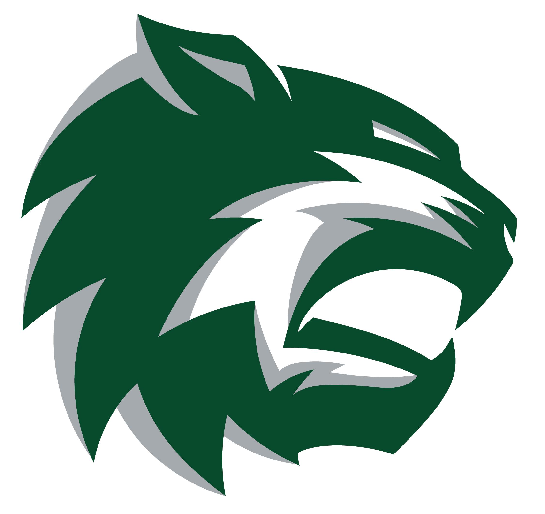 De Soto High School logo