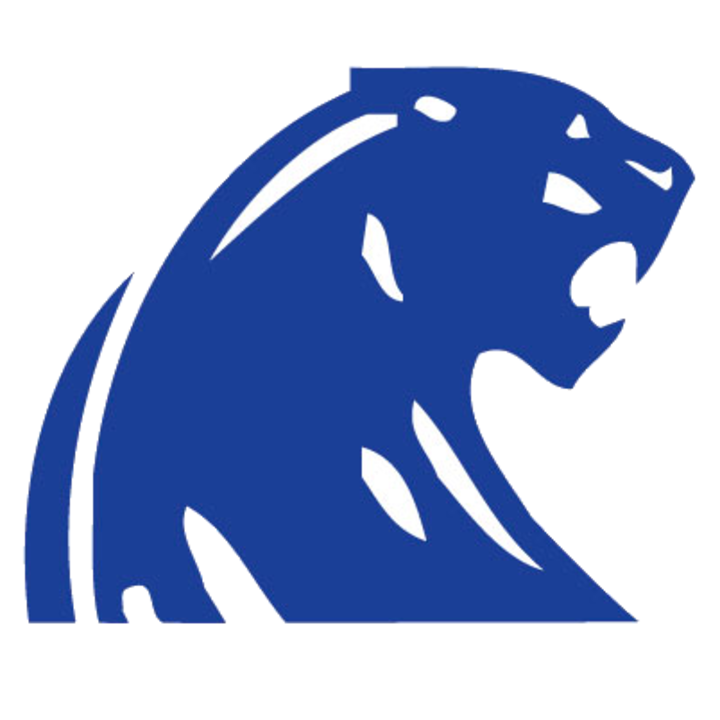 DeWitt High School logo