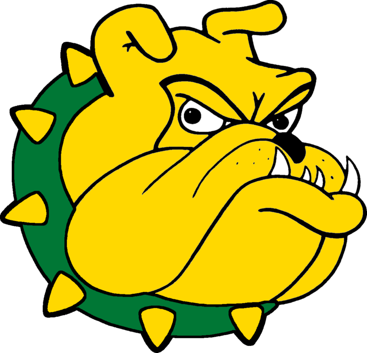 Doddridge County High School logo