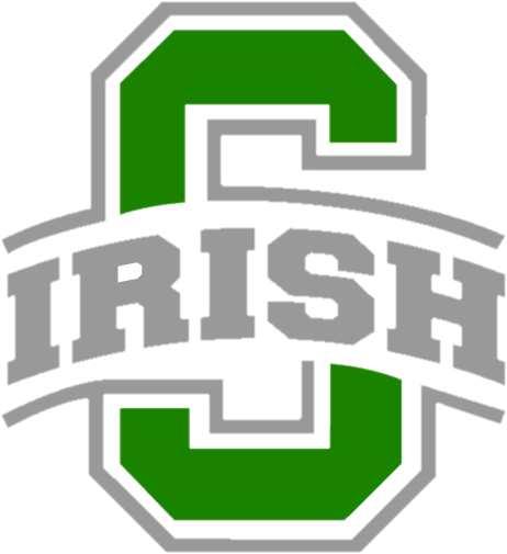 Dublin Scioto High School logo