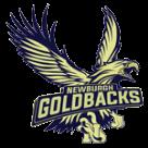 Newburgh Free Academy logo