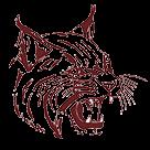 Cypress Fairbanks High School logo