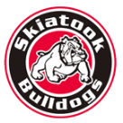 Skiatook High School  logo