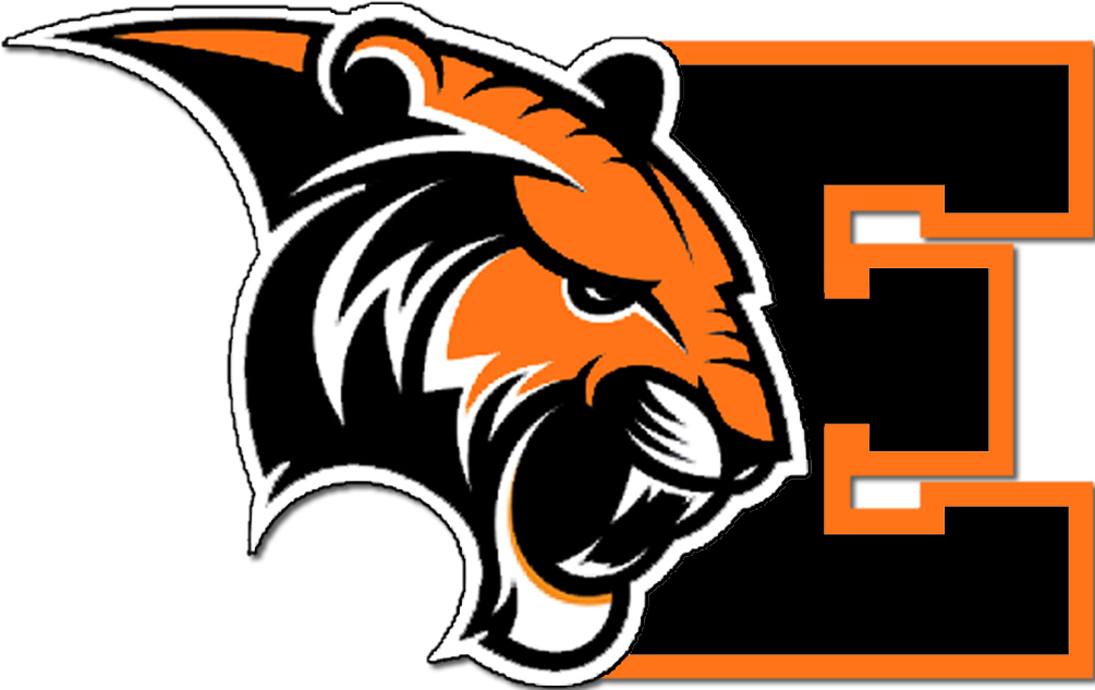 Image result for Erie Tigers logo