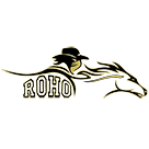 Rider High School logo