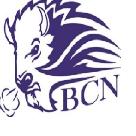 Barnes County North High School logo