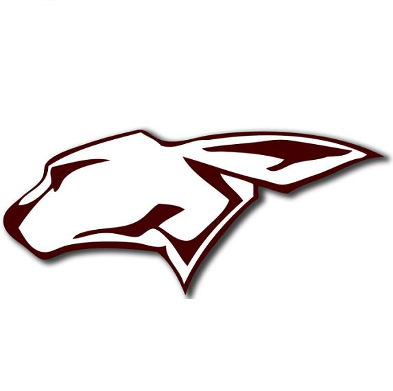 Ralls High School logo