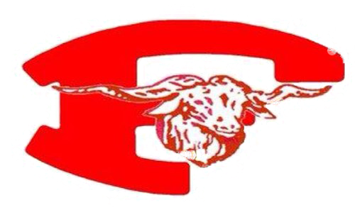 Fredericksburg High School logo