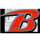 Berrien High School logo