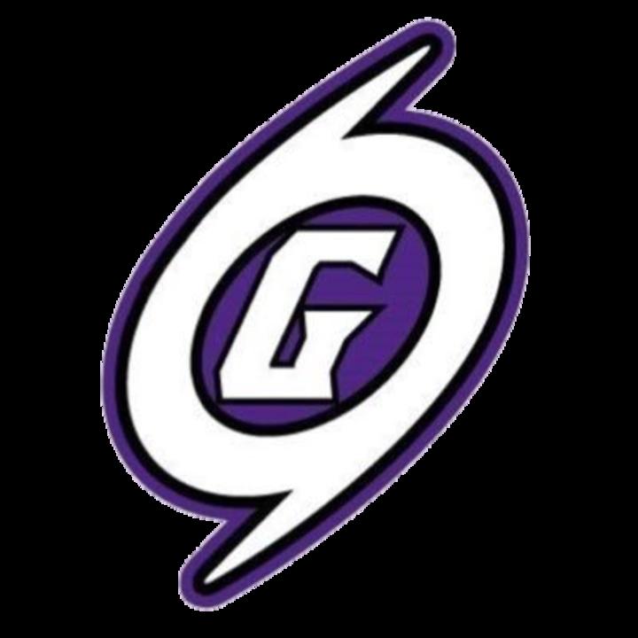 Gainesville High School logo