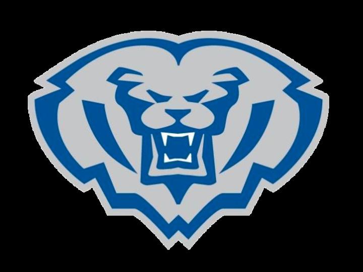 Hamilton Southeastern High School logo