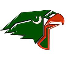 Harlingen High School logo