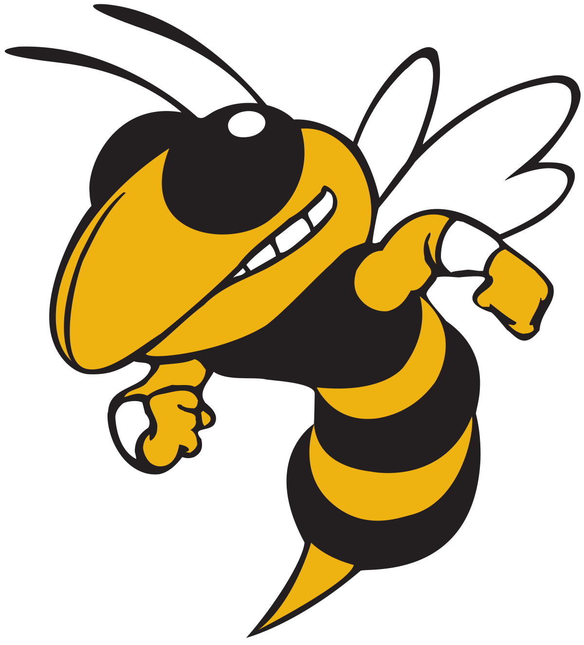 Hinsdale South High School logo