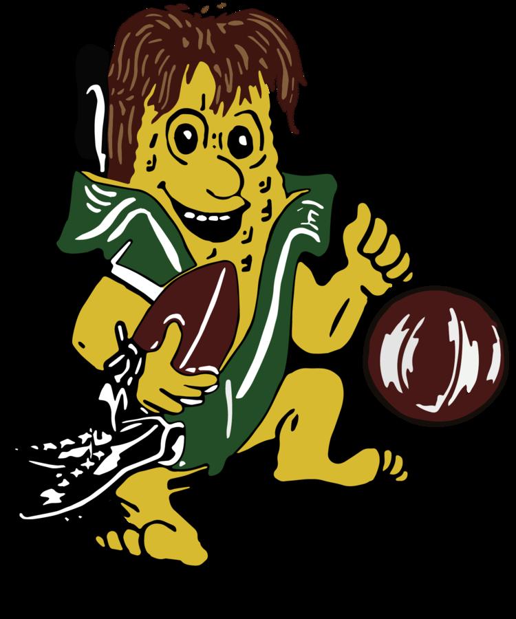 Hoopeston Area High School logo