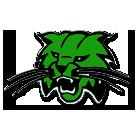 Burley High School logo