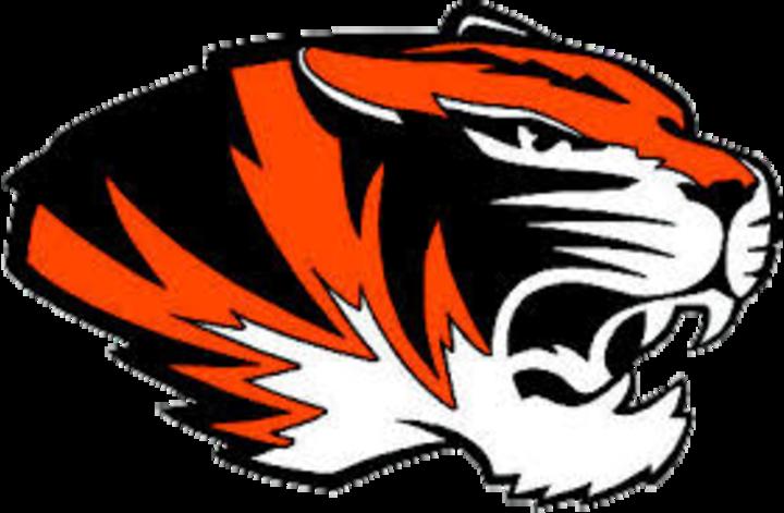 Illini Bluffs High School logo