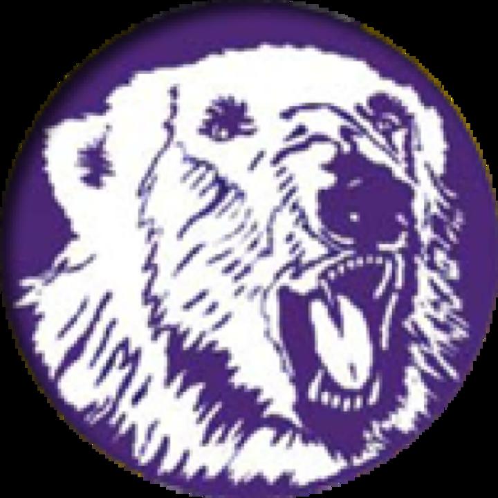 Massillon Jackson logo
