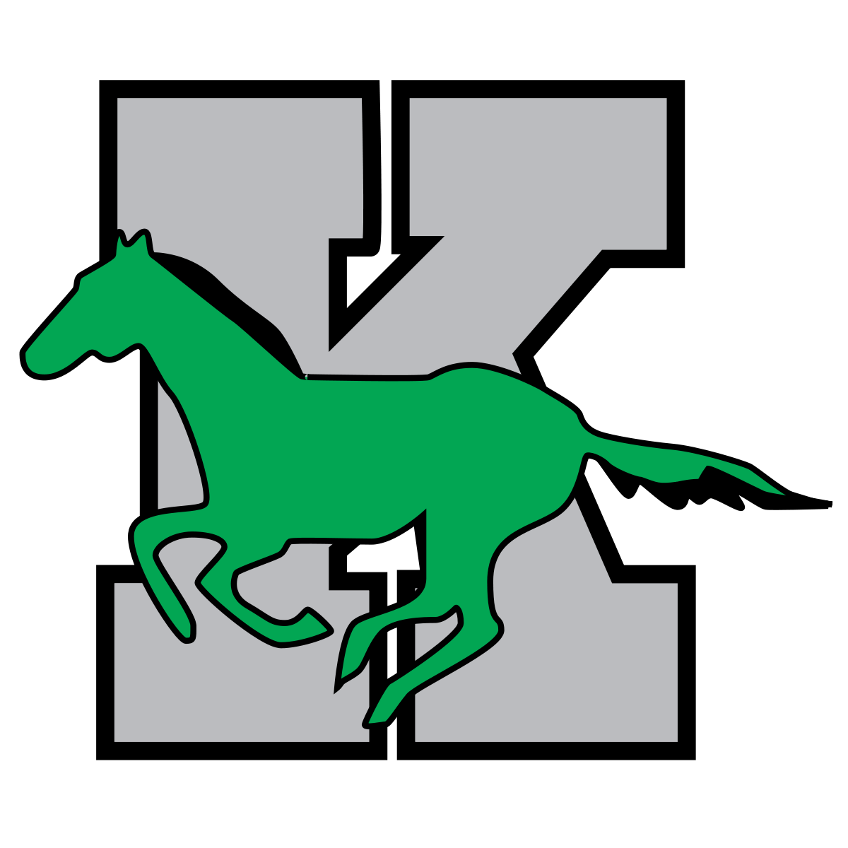 Kennesaw Mountain High School logo
