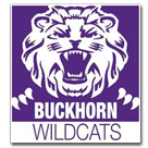 Buckhorn High School logo