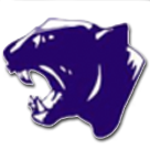 Dawson Springs High School logo