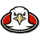 Fairview High School logo