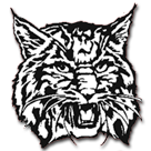 Newport High School logo