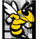 Woodford County High School logo