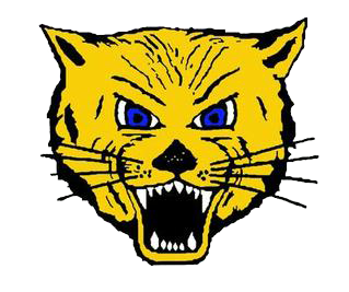 Lake Mills High School logo