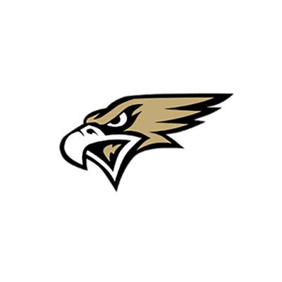 Lidgerwood-Wyndmere High School logo