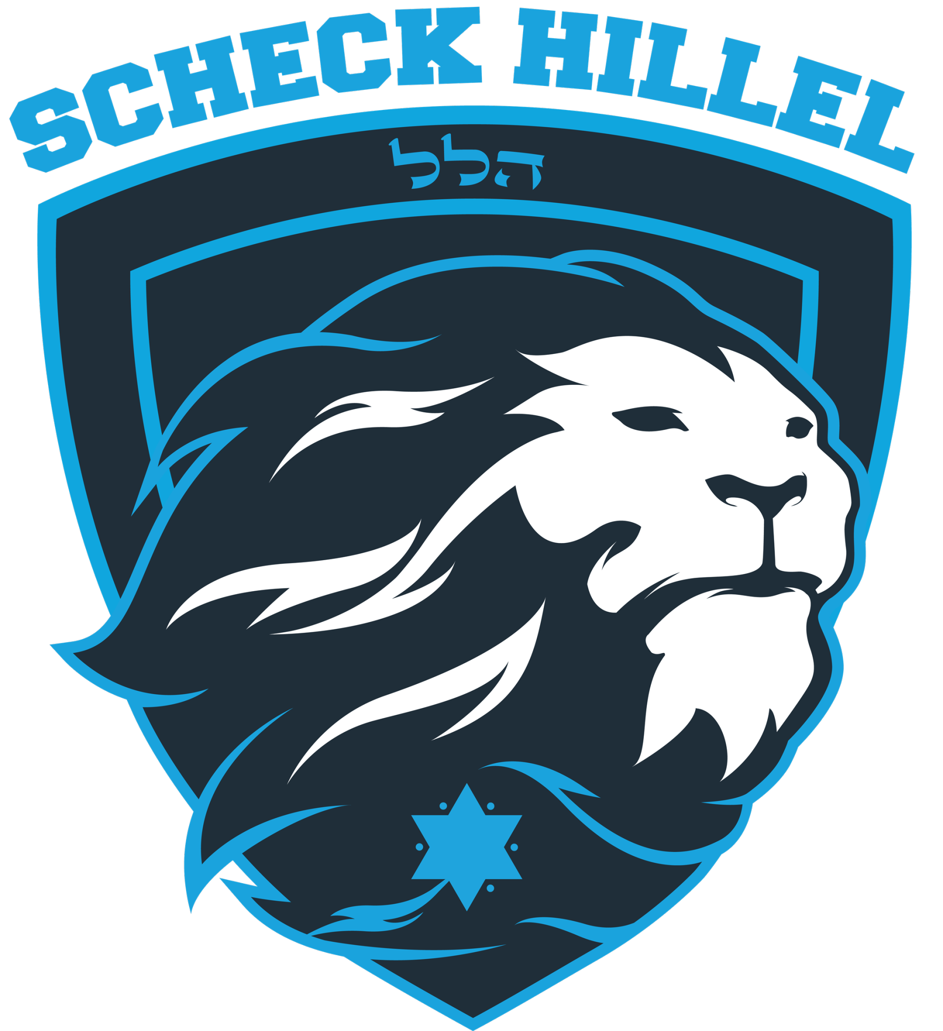 Lipson Hillel Community High School logo