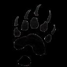 Lyons-Decatur Northeast High School logo