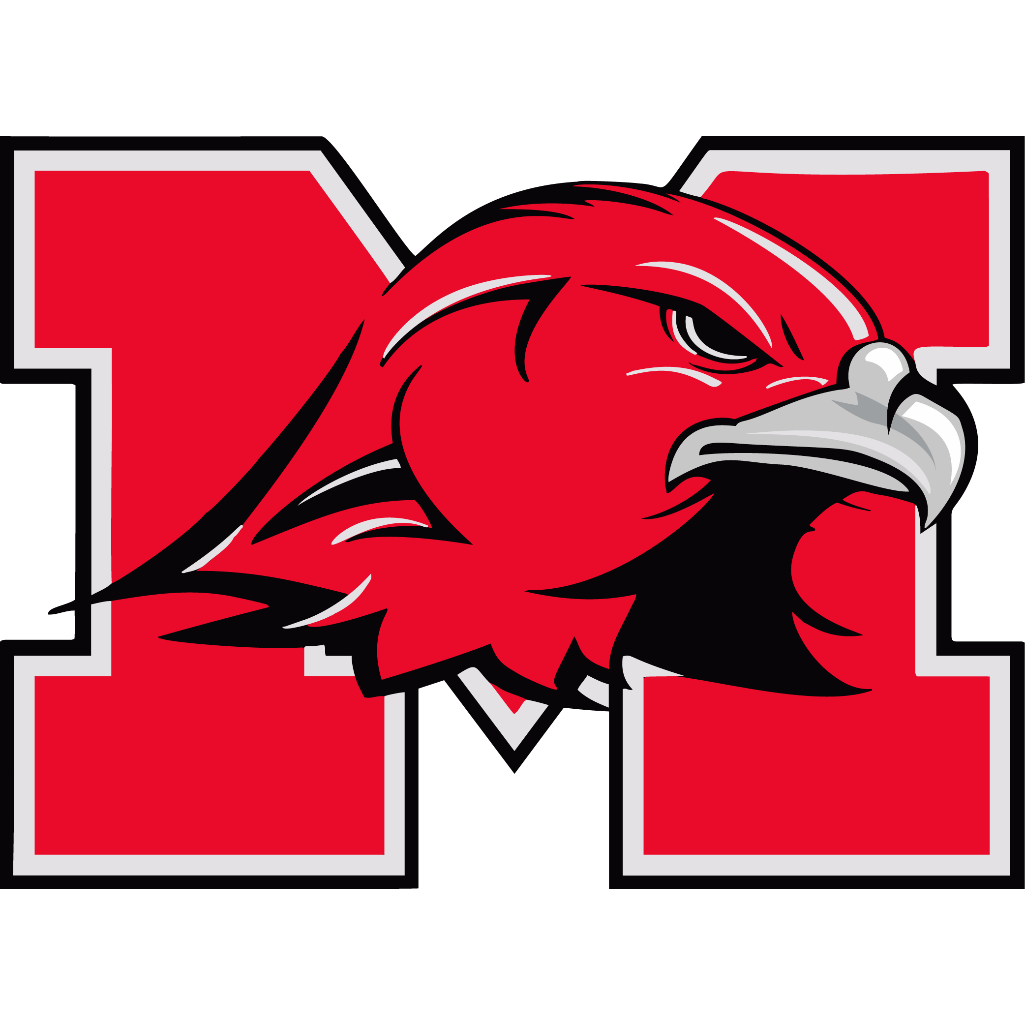 Maine South High School logo