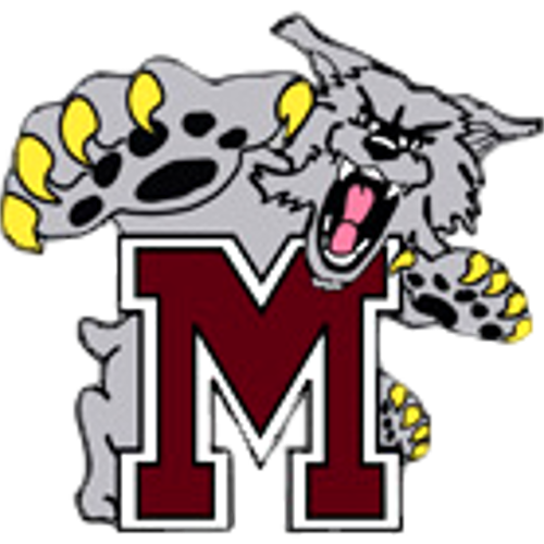 Mechanicsburg Area High School logo