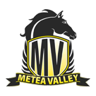 Metea Valley High School logo