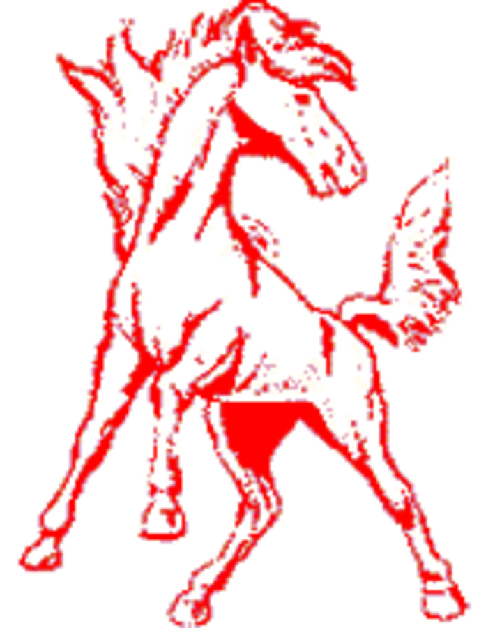 Morrison High School logo