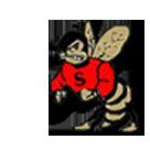 Salisbury High School logo