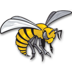 Fessenden-Bowdon High School - Wells County   logo