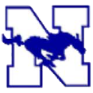 Needle High School logo