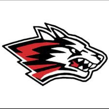 New Holstein High School logo