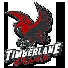 Timberlane Regional High School logo