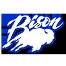 North Sand Mountain High School logo