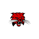 Norwayne logo