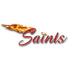 Mountain View Christian High School logo