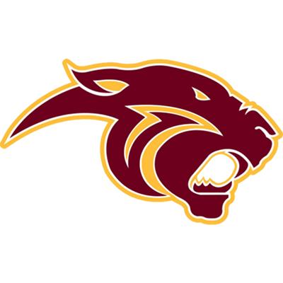Pine Island High School logo