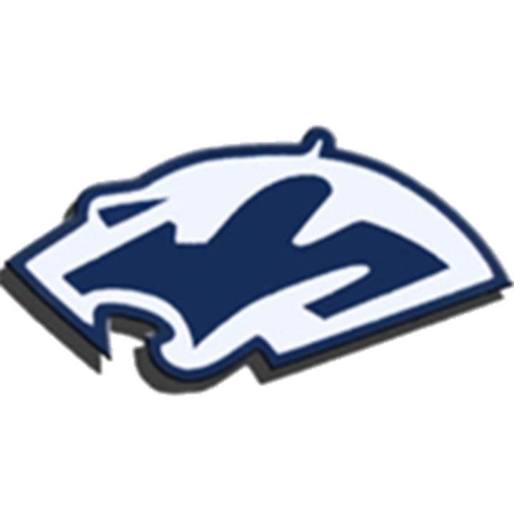 Plainfield South High School logo