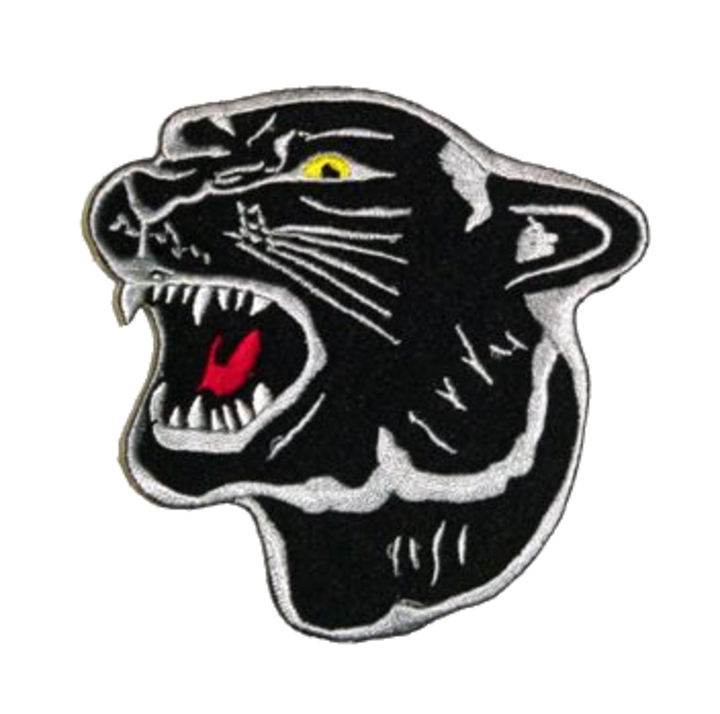 Putnam County High School logo